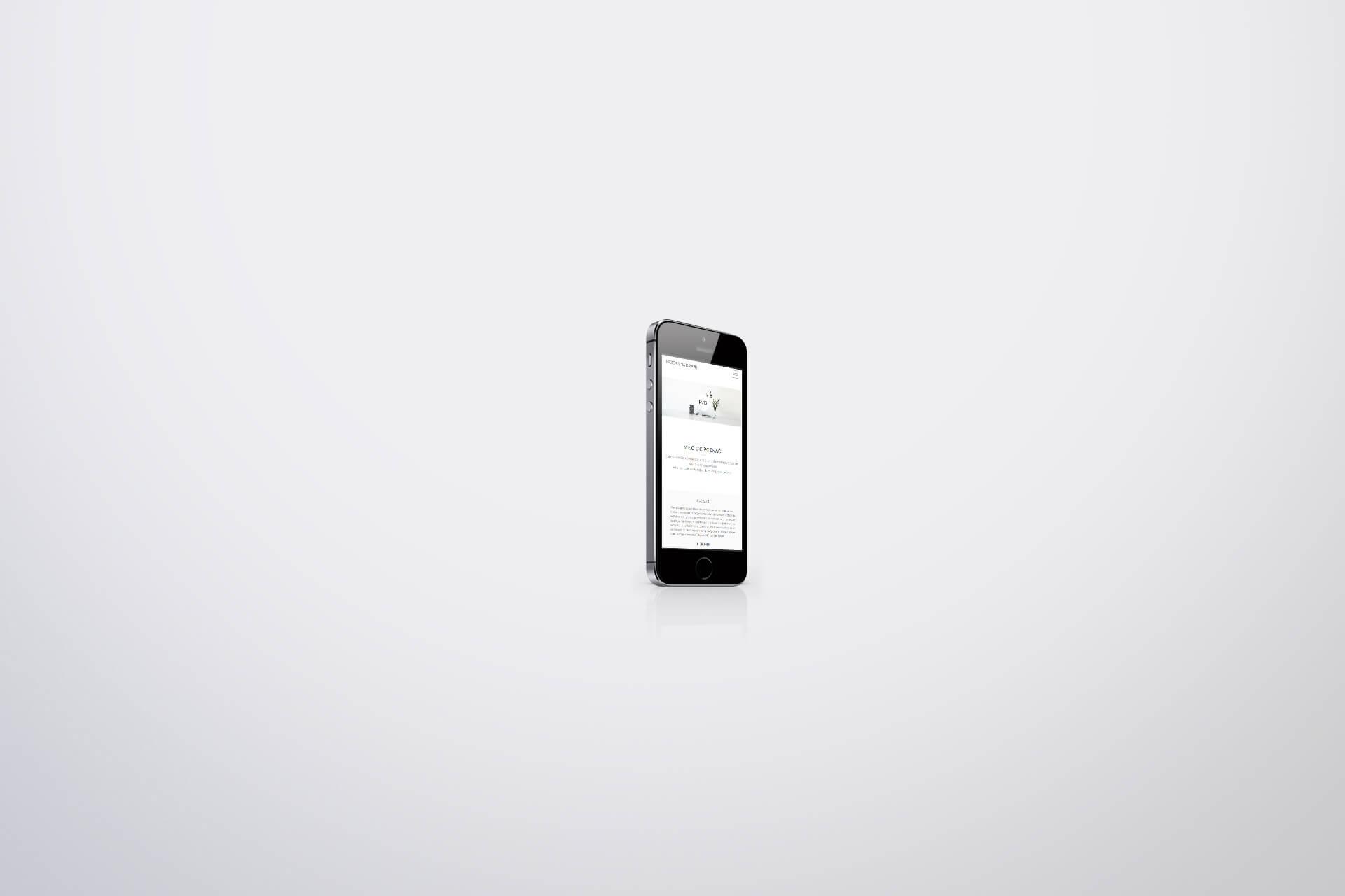 minimalistyczna strona firmowa